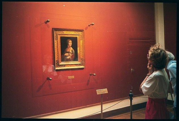 Da Vinciho Dáma shranostajem patří knejdražším obrazům světa. Podle zoologů dáma nedrží hranostaje, ale fretku albína.