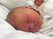 Jmenuji se DIANA ŽITNÍKOVÁ, narodila jsem se 16. května 2017, při narození jsem vážila 3650 gramů a měřila 49 centimetrů. Moje maminka se jmenuje Adéla Jahnová a můj tatínek se jmenuje Michal Žitník. Bydlíme v Úvalně.