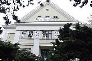 Flemmichova vila