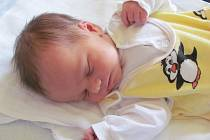 KAREL KREJČÍ se narodil 27.prosince 2011, vážil 3100 gramů a měřil 50 centimetrů, maminkou je Iveta Krejčí, tatínkem je Jan Krejčí, na miminko se doma těší sestřička Terezka, Radim