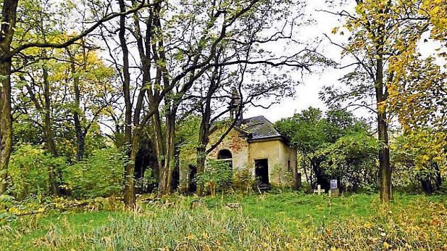 Opuštěný hřbitov v Krásných Loučkách.