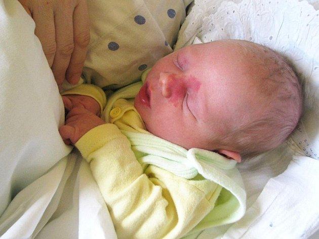 Honzík Trávníček, narozen 21.4.2010, váha 3,7kg, míra 50cm, Krnov. Doma na něj čeká bráška. Maminka Naďa Trávníčková, tatínek Kamil Trávníček.