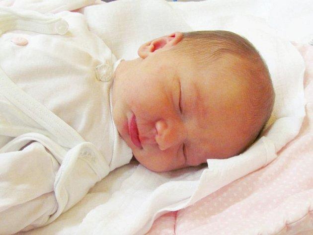 Jmenuji se MICHAELA SEDLÁKOVÁ, narodila jsem se 27. října, při narození jsem vážila 3065 gramů a měřila 47 centimetrů. Moje maminka se jmenuje Bohumila Sedláková a můj tatínek se jmenuje Ladislav Sedlák. Bydlíme v Zátoře.