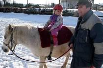Terezka Theimerová je teprve čtyřletou jezdkyní jezdecké školy Amír v Rudné pod Pradědem. Trénuje ji maminka Naďa i tituly ověnčený tatínek Milan Theimer (na snímku).