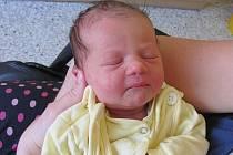 EMMA FRASIER se narodila 30.května 2012, při narození vážila 3200 gramů a měřila 48 centimetrů, maminkou se stala Andrea Frasier a tatínkem se stal Petr Fraiser, Krnov