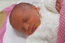 Jmenuji se VIKTORIE DEKANOVÁ, narodila jsem se 18. prosince 2017, při narození jsem vážila 2840 gramů a měřila 48 centimetrů. Moje maminka se jmenuje Jolana Kubečková a můj tatínek se jmenuje Petr Dekan. Bydlíme v Krnově.