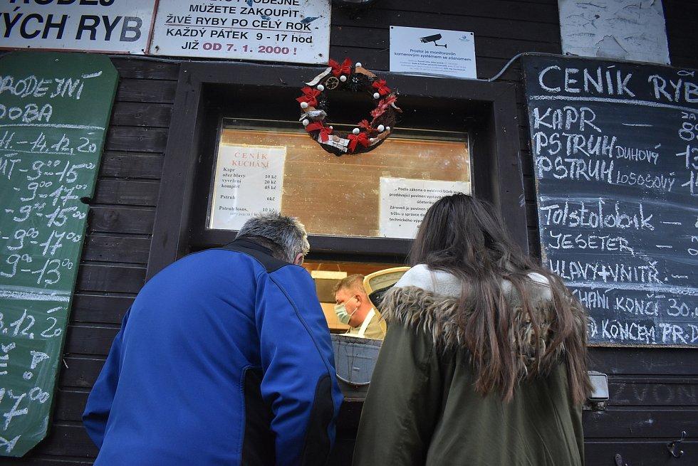 Nikde se zákazník nedozví tolik zajímavostí o rybách a rybářích, jako při nákupu ve stánku na břehu Petrova rybníka. Předvánoční prodej ryb, prosinec 2020.