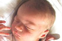 Jmenuji se TOMÁŠ KNUTEL, narodil jsem se 5. července 2016, po narození jsem vážil 3120 gramů a měřil 51 centimetrů. Moje maminka se jmenuje Jana Holečková a můj tatínek se jmenuje Tomáš Knutel. Bydlíme v Ostravě.