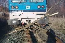 Padlé stromy jsou pravděpodobnou příčinou vykolejení vlaku u Jindřichova ve Slezsku. Nehoda se obešla bez zranění.