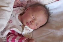 Jmenuji se KATE REKOVÁ, narodila jsem se 20. Října 2015, při narození jsem vážila 3265 gramů a měřila 50 centimetrů. Moje maminka se jmenuje Magdaléna Pilátová a můj tatínek se jmenuje Lumír Rek. Bydlíme v Krnově.