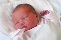 Dominika Petrošová, narozena 15.2.2010, váha 3,1 kg, míra 46cm, Krásné Loučky. Maminka Andrea Petrošová, tatínek Miroslav Petroš.