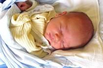 Jmenuji se VÁCLAV TŘASOŇ, narodil jsem se 9. listopadu, při narození jsem vážil 3660 gramů a měřil 51 centimetrů. Moje maminka se jmenuje Táňa Třasoňová a můj tatínek se jmenuje Stanislav Třasoň. Bydlíme v Bruntále.