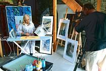 Tess Gemelová je jedním z mála výtvarníků, který ovládá orientální techniku malování na vodě. Svá díla i technikou ebru už představila v různých televizních pořadech i formou kurzů, výstav a workshopů.