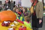 POROTA degustátorů hodnotila patnáct nejlepších jablek sklizených na Krnovsku. Sledovala kromě chuti také celkový vzhled, vůni, šťavnatost a vlastnosti slupky.