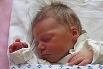 Jmenuji se NELA GARDOŇOVÁ a narodila jsem se 28.července 2012,měřila jsem 48 centimetrů a vážila jsem 2660 gramů.Moje maminka se jmenuje Martina Gardoňová a tatínek se jmenuje Aleš Gardoň. Bydlíme v Dětřichově nad Bystřicí.