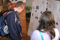 Projekt doba dřevěná pokračuje na vrbenském sportovním gymnáziu.
