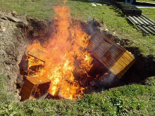 Spálit dvaatřicet včelstvev musel v dubnu včelař Jiří Benč ve vyhloubené jámě. Nebyl to pro něj hezký zážitek.