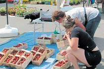 Obyvatelé Krnova si mohou pravidelně nakoupit čerstvé ovoce, zeleninu, houby i květiny na tržnici poblíž pošty nebo u autobusového nádraží.