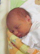Jmenuji se ZUZANA BAREŠOVÁ, narodila jsem se 3. Prosince 2018, při narození jsem vážila 2770 gramů a měřila 48 centimetrů. Krnov
