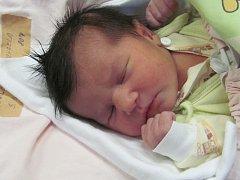 Jmenuji se MICHAELA KOTLÁROVÁ, narodila jsem se 3. Prosince 2018, při narození jsem vážila 3440 gramů a měřila 47 centimetrů. Krnov