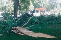 Silný vítr v uplynulých dnech na Krnovsku napáchal značné škody. Tuto mohutnou větev odlomil z lípy ve Smetanových sadech.