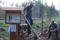 Zasaď si svůj strom, tak zní heslo kampaně Krnov - město stromů.