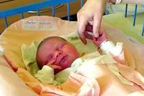 Jmenuji se TEREZKA SPURNÁ, narodila jsem se 6. ledna, při narození jsem vážila 3800 gramů a měřila 48 centimetrů. Moje maminka se jmenuje Zdeňka Spurná a můj tatínek se jmenuje Alois Spurný. Bydlíme v  Dívčím Hradu.