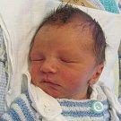 Jmenuji se Teodor Jalamas, narodil jsem se 26. Února 2018, při narození jsem vážil 3150 gramů a měřil 48 centimetů. Moje maminka se jmenuje Ladislava Bubelová a můj tatínek se jmenuje Radek Jalamas. Bydlíme v Amalínu.
