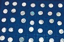 Žena z Ostravy nevěřila vlastním očím, když na ni z hlíny vykoukly stříbrňáky téměř 1800 let staré.