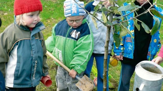 Vrbenské děti zasadily na zahradě mateřské školy v ulici Ve Svahu jablůňku, symbol dobrého evropského sousedství.