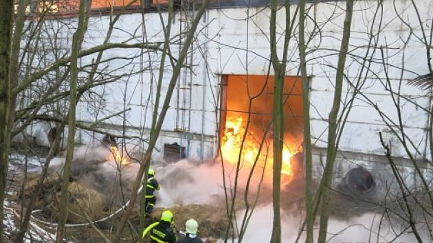 Celkem osm jednotek hasičů zasahovalo od pondělního odpoledne ve Světlé Hoře u požáru haly s 1600 uskladněnými balíky lisovaného sena, který se nechává po dohodě s majiteli dohořet pod bedlivou kontrolou hasičů.