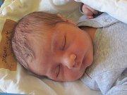 Jmenuji se VILIAM ZELENKA, narodil jsem se 17.dubna 2018, při narození jsem vážil 3780 gramů a měřil 50 centimetrů. Moje maminka se jmenuje Veronika Zelenková a můj tatínek se jmenuje Ondřej Petr Zelenka . Bydlíme v Příboru.