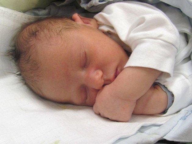 Jmenuji se JAN KERTIS, narodil jsem se 4. ledna, při narození jsem vážil 3505 gramů a měřil 49 centimetrů. Moje maminka se jmenuje Lenka Kertisová a můj tatínek se jmenuje Vladimír Krečmer. Bydlíme v Heřmanovicích.
