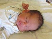 Jmenuji se ŠTĚPÁN BRENKUS, narodil jsem se 1. srpna, při narození jsem vážil 3330 gramů a měřil 48 centimetrů. Moje maminka se jmenuje Blanka Brenkusová a můj tatínek se jmenuje Jiří Brenkus. Bydlíme v Moravském Kočově.