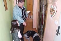 Závady v bytě trápí i manžele Pařízkovy, paní domu ukazuje s vnučkou místa pokrytá plísní a odpadávající omítku zdí.