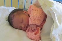Alice Svítková se narodila 6.května 2012, při narození vážila 2740 gramů a měřila 47 centimetrů, maminkou se stala Lenka Černá a tatínkem se stal Petr Svítek, Krnov