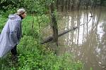 Bobři postavili hráz do oblouku, který  dokáže rozložit tlak vody podobně jako klenba. Pamatovali také na přeliv, kterým při povodni velkou vodu bezpečně převedou kolem hráze.