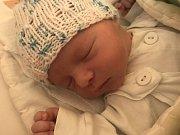 Jmenuji se RÍŠA RYŠÁNEK, narodil jsem se 19. prosince 2018, při narození jsem vážil 3480 gramů a měřil 51 centimetrů. Milovice
