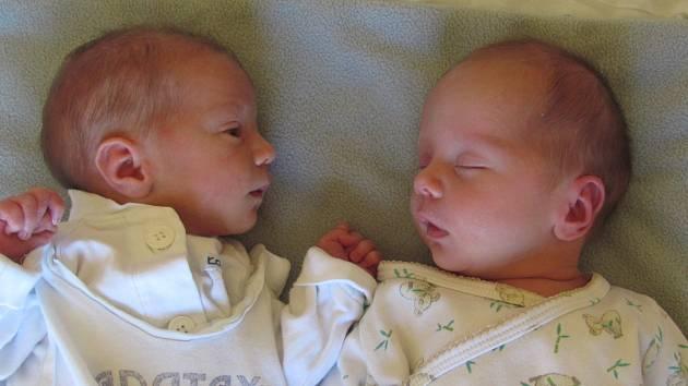 Jmenujeme se TOMÁŠ A MATĚJ NAVRÁTILOVI, narodili jsme se 21. Června 2019. Tomáš při narození vážil 3175 gramů a měřil 49 centimetrů. Matěj při narození vážil 2365 gramů a měřil 44 centimetrů. Žulová.