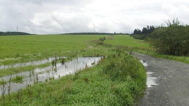 Na travnaté části cesty k lípě voda vytvořila jezírka.