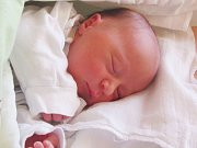 Jmenuji se ELIŠKA POLZEROVÁ,narodila jsem se 24. července, při narození jsem vážila 2805 gramů a měřila 47 centimetrů. Moje maminka se jmenuje Miroslava Kolaříková a můj tatínek se jmenuje Jakub Polzer. Bydlíme ve Vraclávku.