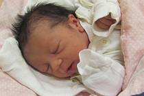 Jmenuji se NELA PECHOVÁ, narodila jsem se 20. ledna, při narození jsem vážila 2835 gramů a měřila 46 centimetrů. Moje maminka se jmenuje Růžena Holubová a můj tatínek se jmenuje Dalibor Pecha, doma se na mě těší bráška Samuel. Bydlíme v Bruntálu.