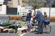 Krnov otevřel městskou tržnici, veřejné WC a radnici.