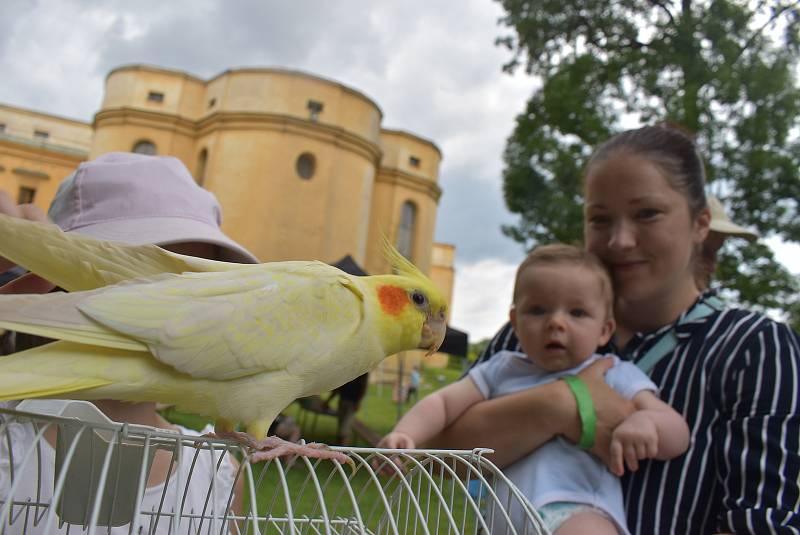 Zámecký park ve Slezských Rudolticích, společná akce chovatelů a teraristů, 31. července 2021.