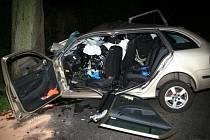 Při nárazu do stromu přišel o život mladý řidič