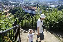 Pohled z Pastýřské stěny na Děčín a Labské údolí na mnoha místech hyzdí vzrostlé náletové dřeviny.