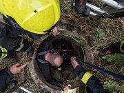 Hasiči vytáhli v Rumburku berana, který spadl do studny.