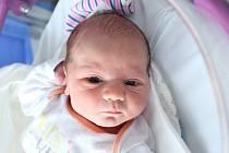 Mamince Michaele Sorádové z Varnsdorfu se ve čtvrtek 9. ledna v 8:21 hodin narodil syn Maxim Sorád. Měřil 50 cm a vážil 3,76 kg.