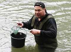 Kamenici už brázdí další generace lososů.