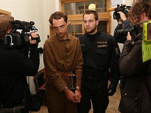 Vrah z Dubice u děčínského soudu